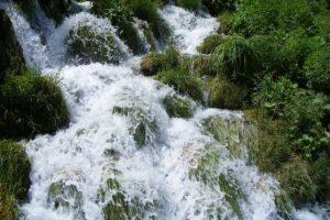 Rivière d'eau pure